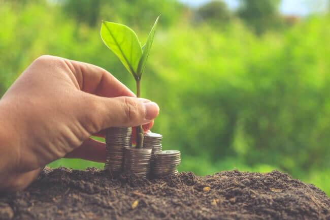Crédito rural: atenção às exigências ambientais